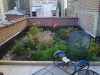 RoofTopLandscapeBed